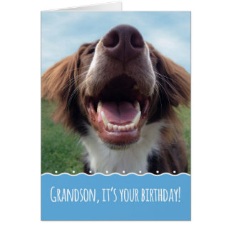 Grandson Birthday, Happy Dog with Big Smile Card