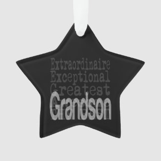 Grandson Extraordinaire Ornament