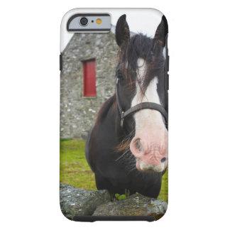 Granero del caballo y de la piedra en Inglaterra