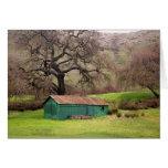 Granero del verde de la colina de Morgan Tarjeta De Felicitación