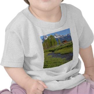 Granero mormón de la fila camiseta