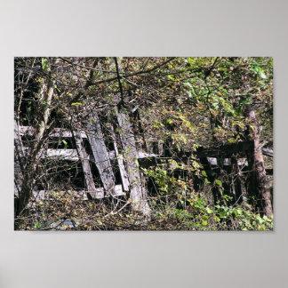 Granero Overgrown cerca del río del remache en el  Poster