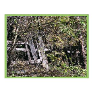Granero Overgrown cerca del río del remache en el  Tarjeta Postal