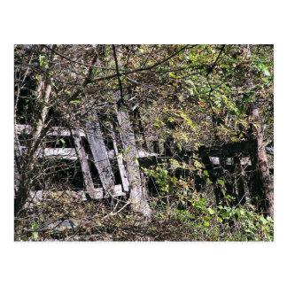 Granero Overgrown cerca del río del remache en el  Tarjetas Postales