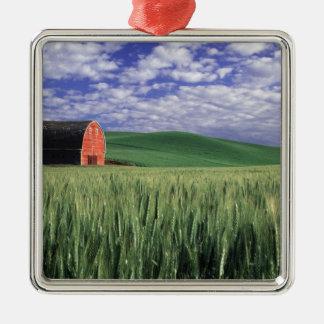 Granero rojo en campo del trigo y de la cebada en adorno navideño cuadrado de metal