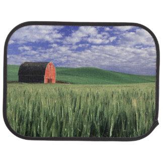 Granero rojo en campo del trigo y de la cebada en  alfombrilla de auto