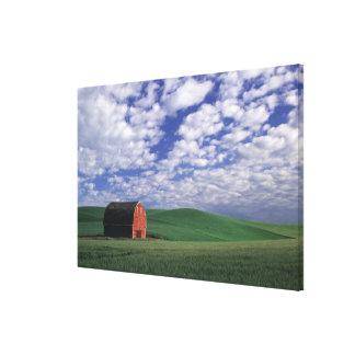 Granero rojo en campo del trigo y de la cebada en  lona envuelta para galerias