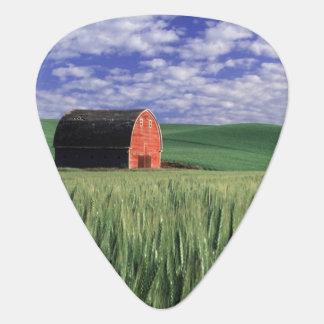 Granero rojo en campo del trigo y de la cebada en  plectro