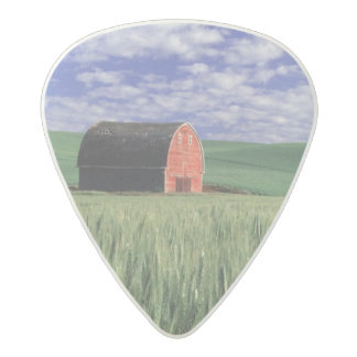Granero rojo en campo del trigo y de la cebada en púa de guitarra acetal
