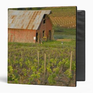 Granero rojo viejo en el borde del viñedo de Zinfa