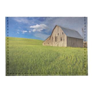Granero viejo en el campo del trigo de primavera tarjeteros tyvek®