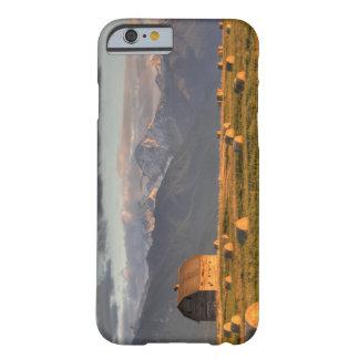 Granero viejo enmarcado por las balas de heno y funda barely there iPhone 6