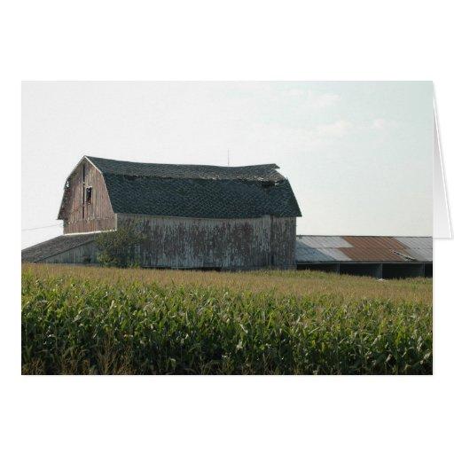 Granero y Campo de maíz-NE Iowa Tarjeta De Felicitación