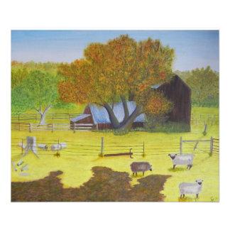Granero y ovejas de Waterford Fotografias