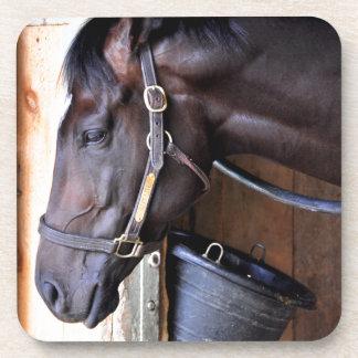 Graneros del asilo del caballo de Alcolite- en Posavasos De Bebidas