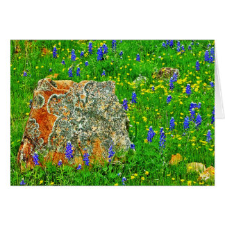 Granite and Wildflowers Willow City Loop TX Greeting Cards