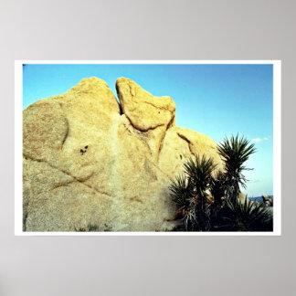 Granite Boulder And Young Joshua Tree Print