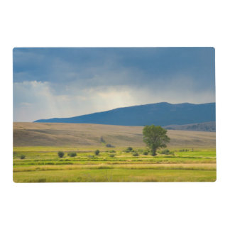 Granite County Montana Laminated Place Mat