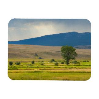 Granite County Montana Rectangular Magnet