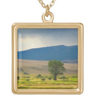 Granite County Montana Square Pendant Necklace
