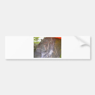 Granite Tiger by Hart Car Bumper Sticker