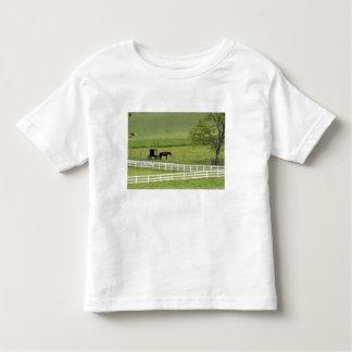 Granja de Amish con el caballo y Berlín cercana Camisas