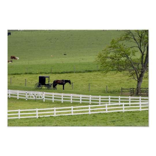 Granja de Amish con el caballo y Berlín cercana co Póster