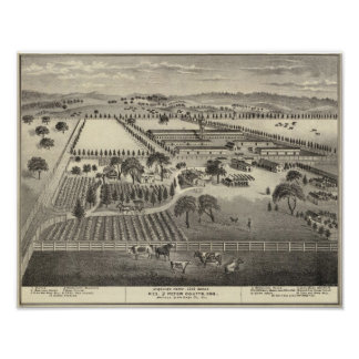 Granja de Ayrshire Póster