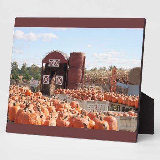 granja de octubre placas para mostrar