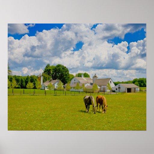 Granja del caballo póster