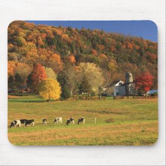 Granja del Monte Holyoke en otoño Alfombrillas De Ratón