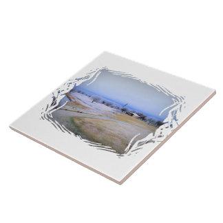 Granja helada azulejos