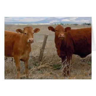 Granja linda DVM del rancho de la enhorabuena de Tarjeta De Felicitación