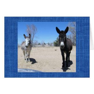 Granja occidental DVM del rancho del veterinario Tarjeta De Felicitación