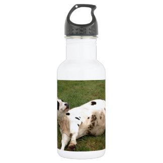 granja orgánica de la vaca feliz