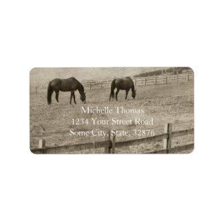 Granja rústica del caballo etiquetas de dirección