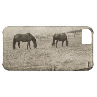Granja rústica del caballo funda para iPhone 5C