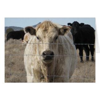 Granja veterinaria linda DVM del rancho de la Tarjeta De Felicitación
