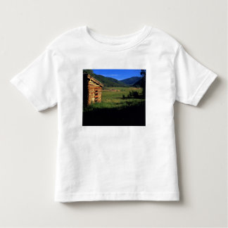 Granja vieja del registro cerca de Park City, Camisetas