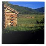 Granja vieja del registro cerca de Park City, Utah Azulejo Cuadrado Grande
