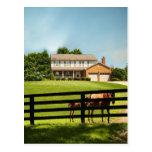 Granjas del caballo de Kentucky Postal