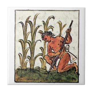 Granjero azteca que cultiva el maíz azulejo cuadrado pequeño