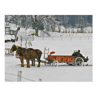 Granjero del invierno de Amish en la Esparcidor-Po