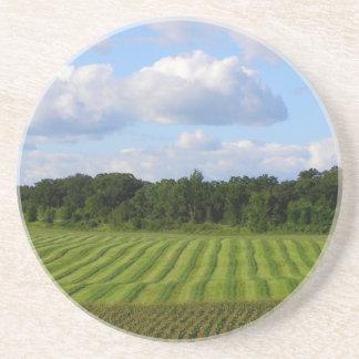 Granjero rayado de la tierra del campo de granja posavasos personalizados