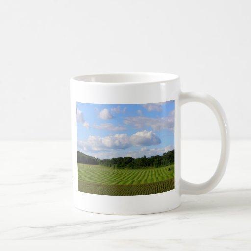 Granjero rayado de la tierra del campo de granja taza clásica