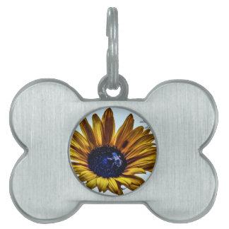 grannys-sunflower pet tag