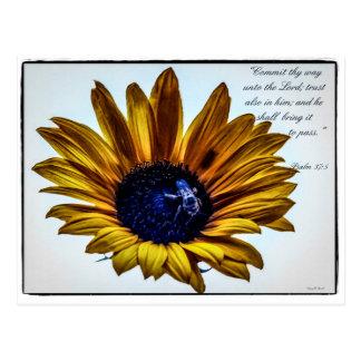 grannys-sunflower postcard