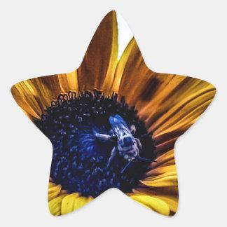 grannys-sunflower star sticker