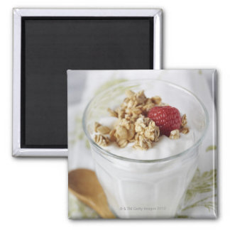 Granola, Oats, Toasted, Fruit, Berry, Raspberry, Magnet