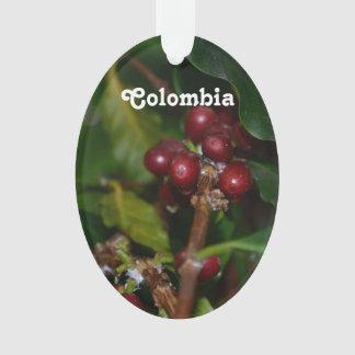 Granos de café colombinos